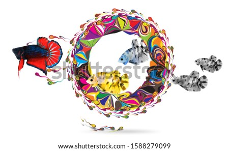 Fish runing thought primary colors-White background