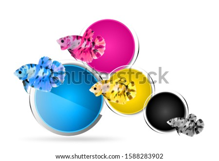 Fish jumping through four Primary colors CMYK, White background.