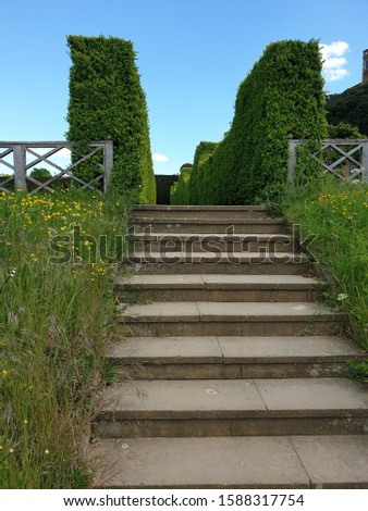 Steps In A Country Garden #1588317754
