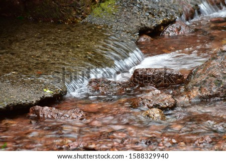 A beautiful closeup of clear water in mountain stream / forest stream . In a forest of Mahabaleshwar. #1588329940