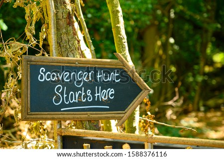 Scavenger hunt this way signpost in lush forest woodland #1588376116