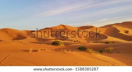 Erg Chebbi dunes, Merzouga, Morocco #1588385287