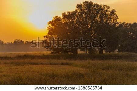 Sun setting over Kanha National Park #1588565734