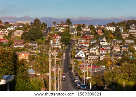 Residential buildings in a residential area of Dunedin #1589300821