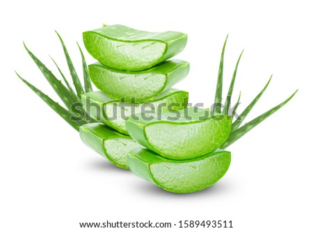 Aloe vera fresh leaves with slices on white background. full depth of field  #1589493511
