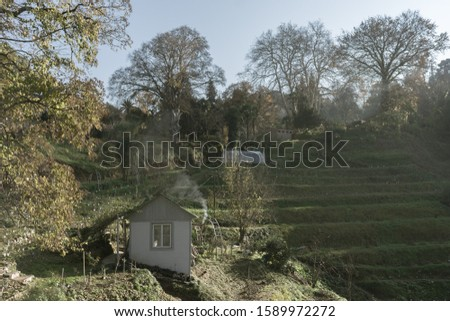 Rural house with smoke from a chimney on a green plantation. Trees and a meadow surround the house. Summer autumn #1589972272