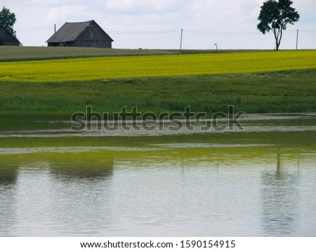 a horizontal field in horizontal stripes, reflections in water #1590154915