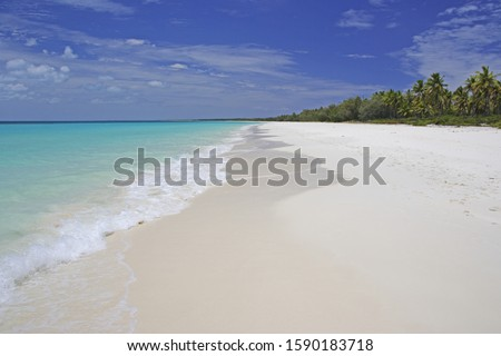 White Beach with Palm Trees and turquoise ocean of Ouvea Island, Loyalty Islands, New Caledonia, Overseas Territory of France #1590183718
