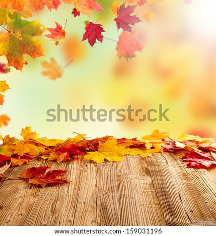 Colored autumn leaves on wooden planks #159031196