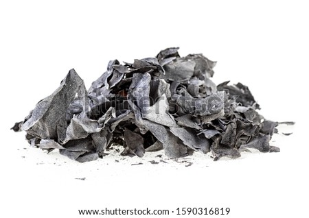 Pile of burned paper on a white background. Ashes. #1590316819