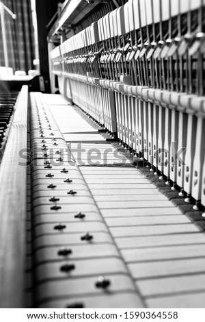 A beautiful serie of a piano shot in black and white #1590364558