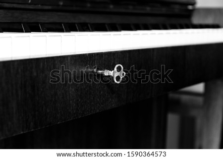 A beautiful serie of a piano shot in black and white #1590364573