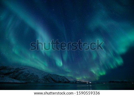 Aurora of Norway Tromso in winter #1590559336