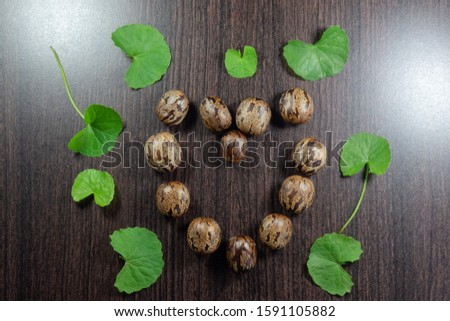 Rubber seeds and pennywort leaf are arranged in a heart shape on wood background. Design concept for Valentine Day #1591105882