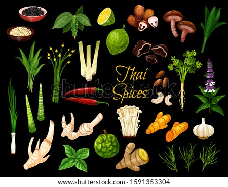 Cooking spices, Thai cuisine herbs and seasonings. Vector Thailand spices, condiments ans herbal flavorings, ginger root, lemongrass and kaffir lime, coriander, lotus and shiitake mushrooms #1591353304