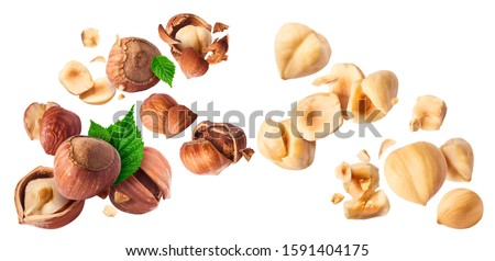 Hazelnuts crushed into pieces and green leaves frozen in the air on a white background. Creative food levitation conception. High resolution image. #1591404175