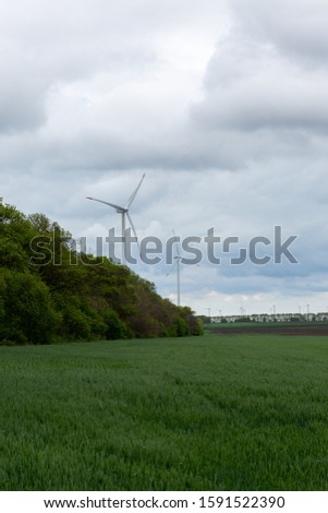 A picture of a garden surrounded by trees with white windmills under a cloudy sky on the background