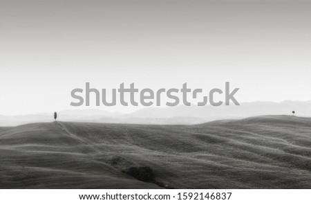 Minimal black and white landscape. Tuscany landscape. #1592146837