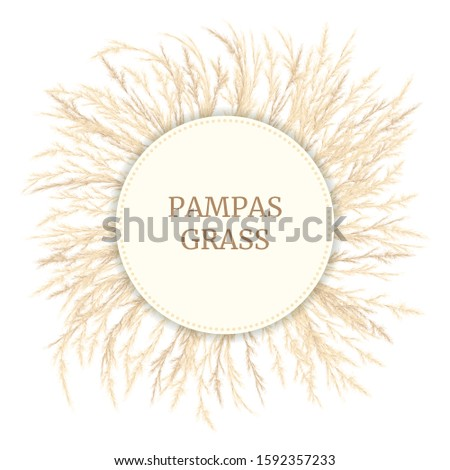 Silver golden Pampas grass Card template with copy space. Vector illustration. Round Circle badge. Floral ornamental grass. feathery prass head plumes, for design arrangements, displays, decoration #1592357233
