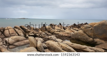 The amazing landscape in Cabo Polonio, Urugay. Some seals have found their way into the picture