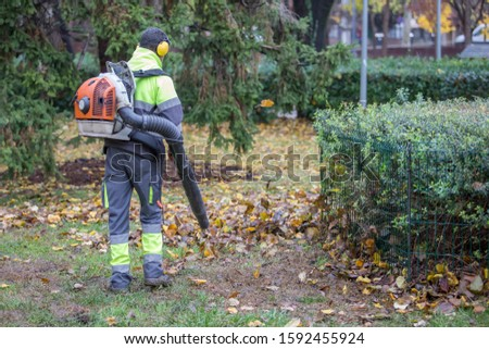 worker operating a heavy duty leaf blower in city park. Leaves swirling up. Removing fallen leaves in autumn.foliage cleaning in. #1592455924