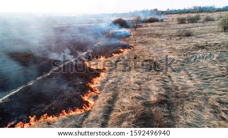 Forest and field fire. Dry grass burns, natural disaster. Aerial view. Strong fire in an empty field, strong smoke from a burning place. Flying over a fire at low altitude. #1592496940