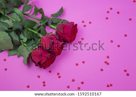 Red roses on a pink background. red roses with red hearts. Banner. Greeting card with flowers. Place for text.