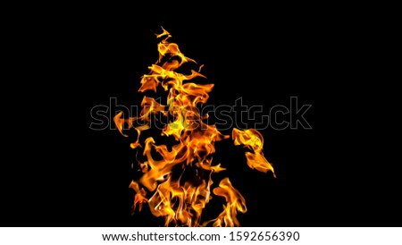 Fire flames on black background. fire on black background isolated. fire patterns #1592656390