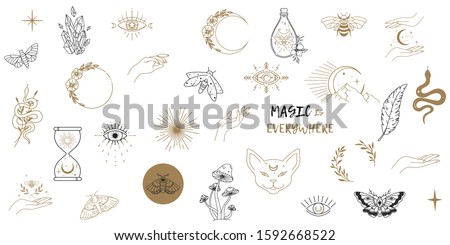 Vector witch magic design elements set. Hand drawn, doodle, sketch magician collection. Witchcraft symbols. Perfect for tattoo, textile, cards, mystery #1592668522