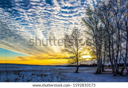 Winter sunset nature sky clouds landscape. Sunset sky clouds in winter. Winter sunset sky clouds view #1592810173