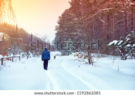 Man with dog walks on the country snowy road between pine forest and village. The human walks in the countryside in winter. #1592862085