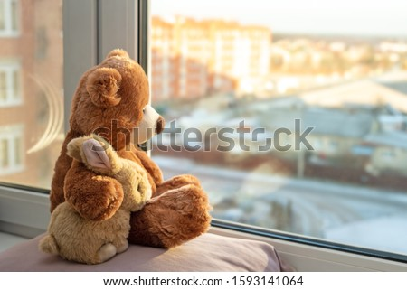 Best friends teddy bear and bunny toy sitting on window sill hugging each other and looking out of windows, sunlight, sunny day. Side view. Love, family and friendship concept. stay at home, safe. #1593141064