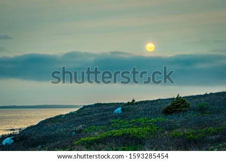Smokey seascape at west head church point long exposure seashore shoreline coast along the ocean #1593285454