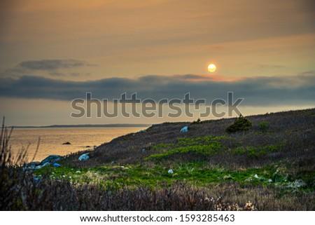 Smokey seascape at west head church point long exposure seashore shoreline coast along the ocean #1593285463