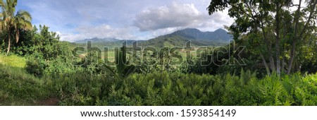 The island of Kauai's lush greenery. #1593854149