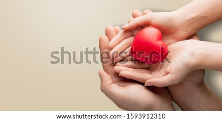 adult and child hands holding red heart on aqua background, heart health, donation, CSR concept, world heart day, world health day, family day #1593912310