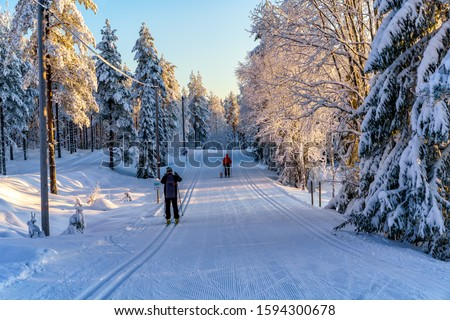 Exercise on skiing with and without a dog a wonderful winter day in Orsa, Sweden. #1594300678