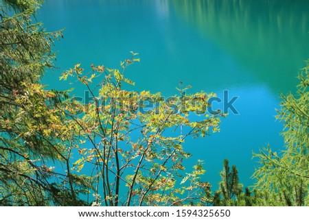 Tovel lake on Italy alps #1594325650