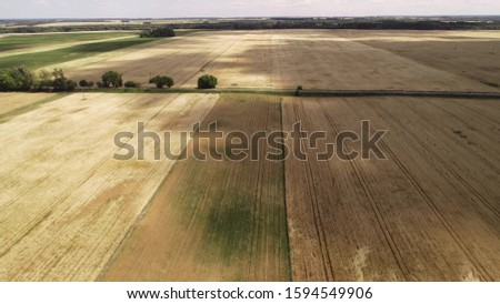 Flying over agricultural fields. In the fields are straw rolls. Warm summer day, shot under the rising sun. #1594549906
