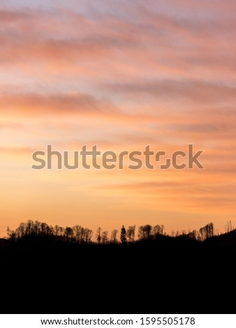 Silhouette of trees. Silhouette of trees in a mountain ridge at sunset.  #1595505178