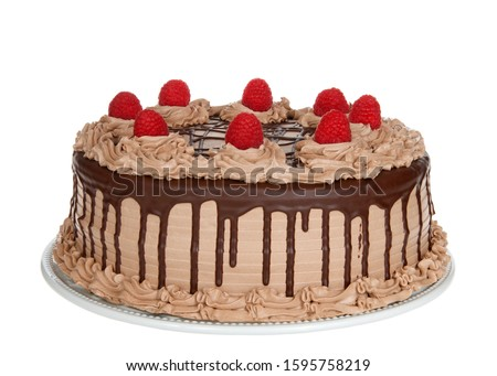 Chocolate Cake frosted with milk chocolate frosting with dark choc ganache dripping down the sides. Embellished with pristine raspberries on top. Chocolate Raspberry cake on porcelain plate isolated. #1595758219
