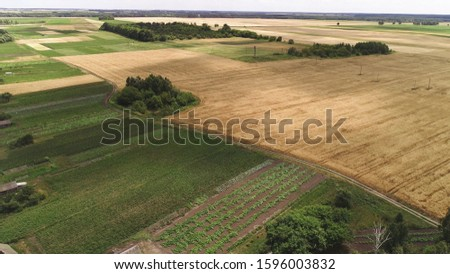 Flying over agricultural fields. In the fields are straw rolls. Warm summer day, shot under the rising sun. #1596003832
