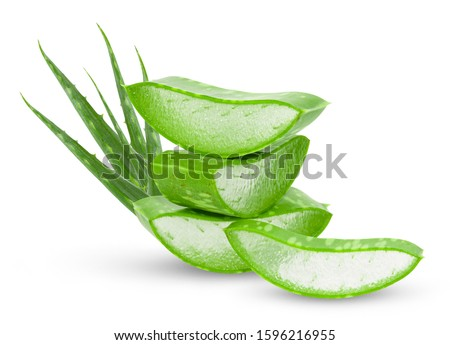 Aloe vera fresh leaves with slices on white background. full depth of field  #1596216955