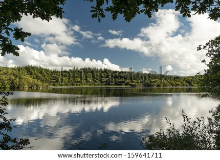 Trees and reflections at Loch Coille-Bharr #159641711