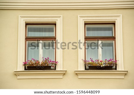 Windows and flowers in the historical center of Cesky Krumlov on a cloudy day on September 3, 2018. #1596448099