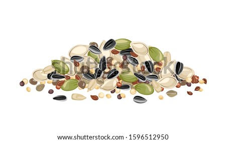 Heap of different seeds isolated on a white background. Sunflower, pumpkin, sesame, flaxseed, quinoa and hemp seeds. Vector illustration of organic healthy food in cartoon flat style. Royalty-Free Stock Photo #1596512950