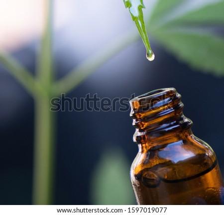 Close-up images of medicine drops, marijuana medicine, biological and ecology, medicinal plants, cbd oil from bottles, herbal treatment, alternative medicine #1597019077