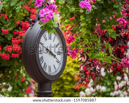 A standing round clock in a colorful garden among the hanging flowers, the pointers indicate the time is 3:50 PM. #1597085887