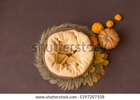 the wooden tub is decorated with autumn leaves and pumpkins. basket for newborn photo shoot. the bowl is made of solid wood. background for newborn photography