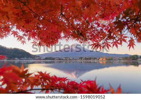 Mountain Fuji with red maple leaves or fall foliage in colorful autumn season near Fujikawaguchiko, Yamanashi. Five lakes. Trees in Japan with blue sky. Nature landscape background #1598019052